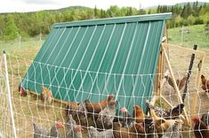 How to Design and Build a Movable Chicken Coop: Build a Roof