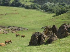 Parque de la naturaleza de Cabárceno #Cantabria #Spain