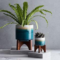 Mid-Century Turned Leg Tabletop Planters - Reactive Glaze #westelm