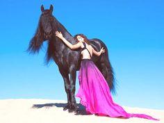 das schwarz Pferd und das model