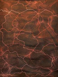 Size: x Lightning Dre Aboriginal History, Aboriginal Artwork, Aboriginal Culture, Aboriginal Artists, Indigenous Australian Art, Indigenous Art, Art For Art Sake, Dot Painting, Native Art