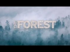 The Forest - Salomon Running TV S4 E05 - YouTube
