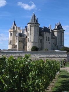 The Saumur Castle in the loire valley in France.  Stayed in Saumur, and drank the local wine :)