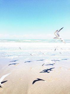 Beach House life+style: Photo