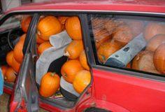 The stuff ur car with pumpkins prank!