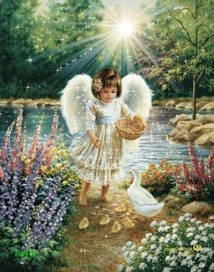 ANGES ....
