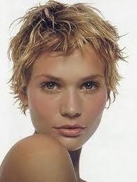 Google Image Result for http://76.12.200.158/elfin-hairstyles/slides/pixie-11.jpg