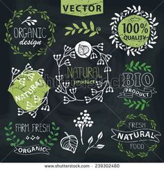 Set of badges,labels,logo,floral elements,wreaths and laurels.Organic,bio,natural design template.Chalkboard background.Hand drawing painting.Vintage vector,green colors