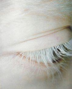 eyebrows   Tumblr