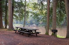 Shaded by a hemlock tree, a picnic table is near the Clarion River at Cook Forest State Park, Pennsylvania...my favorite place in the world.