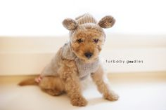 Handcrafted Crowns — Sock Monkey Knit Hoodie Dog Sweater