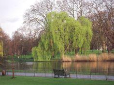 Parque Saint James, en Londres