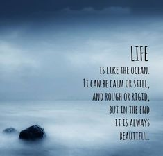 "Life Quote "" LIFE IS LIKE AN OCEAN. IT CAN BE CALM OR STILL AND ROUGH OR RIGID. BUT IN THE END, IT'S ALWAYS BEAUTIFUL"""