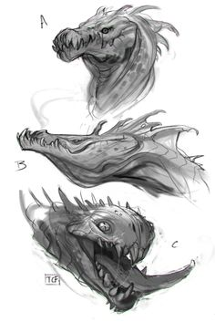 Dragon Sketches, Taylor Fischer on ArtStation at https://www.artstation.com/artwork/l62Qa