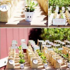 Seedlings/seeds party favors #seeds #burlap
