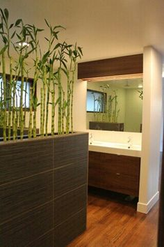 199 E. great use of greenery as a divider, extra bonus that bamboo grows so easily Half Wall Decor, Office Interior Design, Interior Decorating, Room Deviders, Room Partition Designs, Diy Room Divider, Living Spaces, New Homes, Indoor