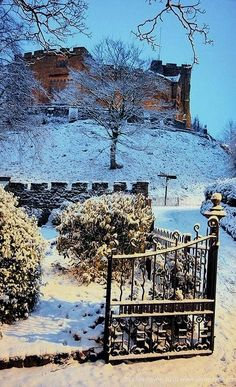 Frosty castle gates.. Tamworth, Staffordshire, England | Flickr - Photo by elvis_payne