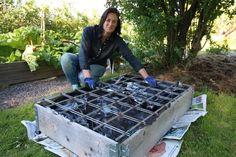 Green Zone, Growing Gardens, Sustainable Living, Outdoor Decor, Gardening, Composting, Hem, Garden Ideas, Plants