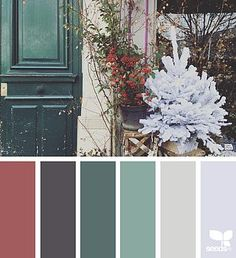 flora palette | design seeds | Bloglovin'
