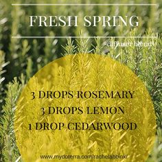 Diffuse this blend of essential oils for a fresh spring scent. #essentialoils #doTERRA #diffuserblend