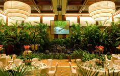 Ballroom Rainforest