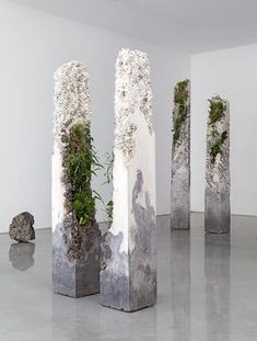 Terraforms 2014-cement, marble waste, limestone, steel slag, coal ash, plastic fibre, tree fern slab, various Australian native plants and Spanish moss