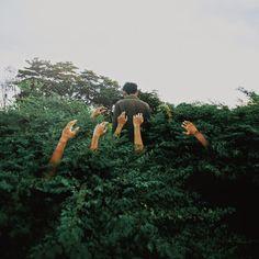photography by yutha yamanaka