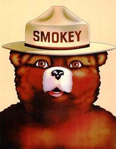 Google Image Result for http://cassiebehle.files.wordpress.com/2012/01/smokey-the-bear.jpg