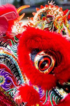 Chinese New Year Dragon Dance, China Lion Dragon, Dragon Art, Chinese Celebrations, Chinese New Year Traditions, Chinese Lion Dance, Chinese New Year Dragon, Nutcracker Costumes, Festival Photography, Dragon Dance