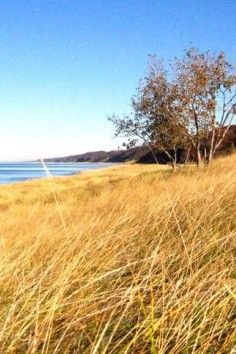Oval Beach, Saugatuck, explore one of the best shorelines in the world.