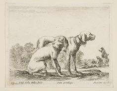 Etched by Stefano della Bella (Italian, 1610–1664). Two Hounds, ca. 1641. The Metropolitan Museum of Art, New York. Purchase, Joseph Pulitzer Bequest, 1917 (17.50.17-272).