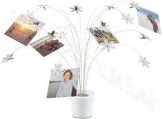 UMBRA design FOTOFALLS UMBRA Stojan na fotky biely Place Cards, Place Card Holders, Design