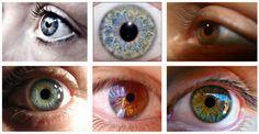 SAIKU-otra vida es posible-: ¿Qué puede decir el color de ojos sobre nuestra pe...