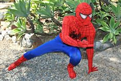 Superman & Spiderman Birthday Party Characters For Rent - Zeoh Free Classifieds Party Characters, Storybook Characters, Superhero Birthday Party, Birthday Parties, Canada Goose Homme, Lincoln Birthday, Superman And Spiderman, Party Entertainment, Princess Party