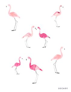 Decade flamingo print by Illustrator Bernadette Pascua.