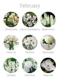 wedding flowers in season - february