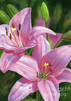 Oil painting Flowers art floral painting on wall oil pastel painting easy water paint flowers art canvas for sale Lily Painting, Oil Painting Flowers, Watercolor Flowers, Flower Canvas Art, Flower Art, Water Paint Flowers, Painted Flowers, Lilies Drawing, Oil Pastel Paintings