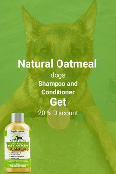 Our Oatmeal Dog Shampoo And Conditioner is recommended by Vets and Specially formulated for pets with allergies to food, grass and flea bites. Can be used for dogs, cats, ferrets and rabbits.. There isNO ALCOHOL, NO SULPHATES, NO ADDED COLORS & NO HARSH CHEMICALS.#homemadeshampoo #shampoo #dogs Homemade Dog Shampoo, Natural Dog Shampoo, Shampoo And Conditioner, Allergies, Cat Lovers, It Works, Dog Cat, Ferrets, Pets