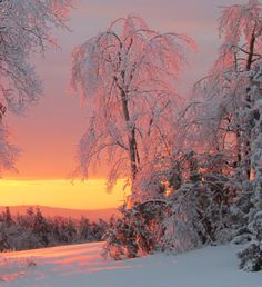Winter Wonderland - Sunset winter in Maine. : Winter Wonderland - Sunset winter in Maine. Maine Winter, Winter Szenen, I Love Winter, Winter Sunset, Winter Time, Winter Months, Winter Photography, Nature Photography, Snow Scenes