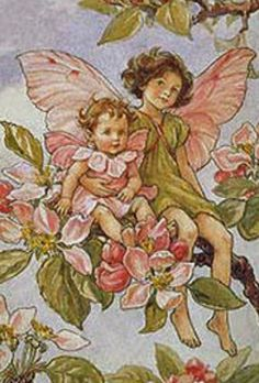 A is for Apple Blossom and Angel of God - alphabet path is a sweet story of flower fairies and Christian art. Maybe could use these stories with modeling, during LA block.