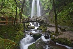Jumog Waterfall, Central Java, Indonesia