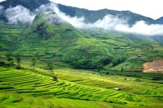 056587547 Vietnam to promote northern mountains in 2017 Lao Cai, Sa Pa, Tourism  Industry,