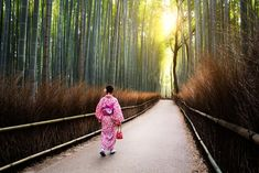 The bamboo groves by forest girl jungle nature tourist tree abstract road path japan bamboo background branch leaf natura Have A Nice Vacation, Bamboo Background, Best Travel Guides, Forest Girl, Poker Online, Another World, Hot Springs, Japan Travel, Railroad Tracks
