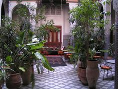 Riad means Garden. A beautifull garden in Fez.  www.naturalymorocco.co.uk/