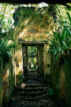 Abandoned Prison on Devils Island in French Guiana