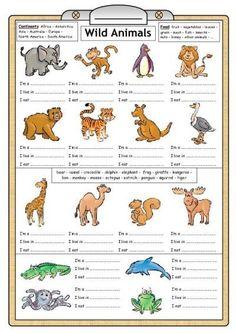 wild animals work sheet