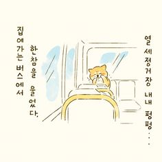 마지막 회사를 나오던 날 In Ancient Times, Cat Walk, Shiba Inu, Cat Life, Night Time, Cats Of Instagram, Cat Lovers, Cute Animals, Anime