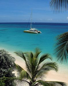 Almond Beach,Barbados... http://youtu.be/4TyQZw2YgkI Find a cheaper flight, hotel, vacation package, rental car, or activity within 24 hours of booking...    http://biguseof.com/special-vacation-deals