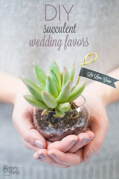 Spring is on its way (we promise), and with it thoughts of nature. Give the gift of green to guests with DIY succulent wedding favors! Succulent favors are both Succulent Wedding Favors, Unique Wedding Favors, Wedding Party Favors, Wedding Flowers, Wedding Plants, Wedding Ideas, Wedding Decor, Diy Party, Trendy Wedding