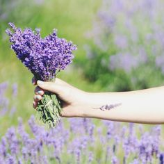 small lavender tattoo